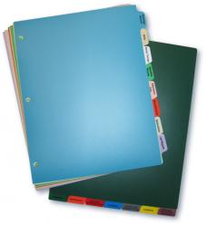 Poly Tab Chart Divider Set - Long Term Care