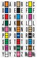 Reynolds & Reynolds ColorFile (Match) Alphabetic Labels, Ringbook Binder Package, 240/pkg. 3800 Series